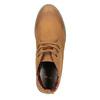 Botki damskie zkolorową wyściółką bata, brązowy, 599-4605 - 19